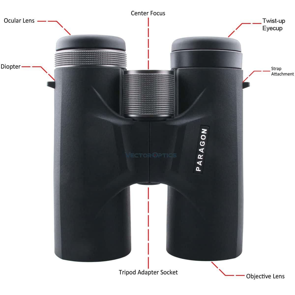 Paragon 10x42 Binocular